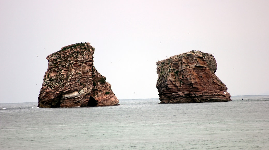 "Photo ""Hendaye Beach"" by Magdus Laszló Hunga… (CC BY-SA) / Cropped from original"