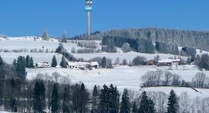 Виггенсбах