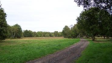 Knaphill/