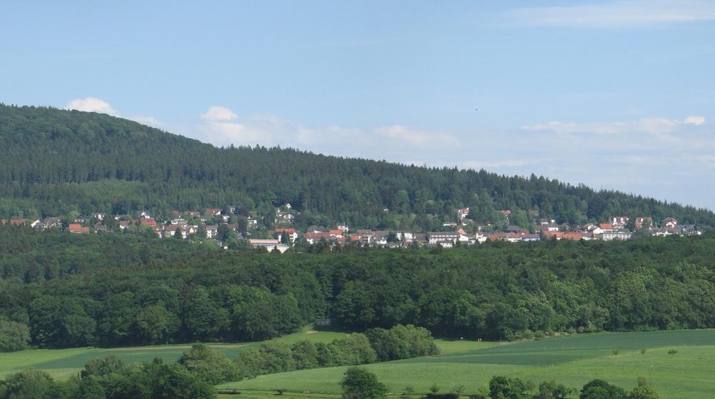 """Foto """"Idstein"""" von Johannes Robalotoff (CC BY-SA)/zugeschnittenes Original"""