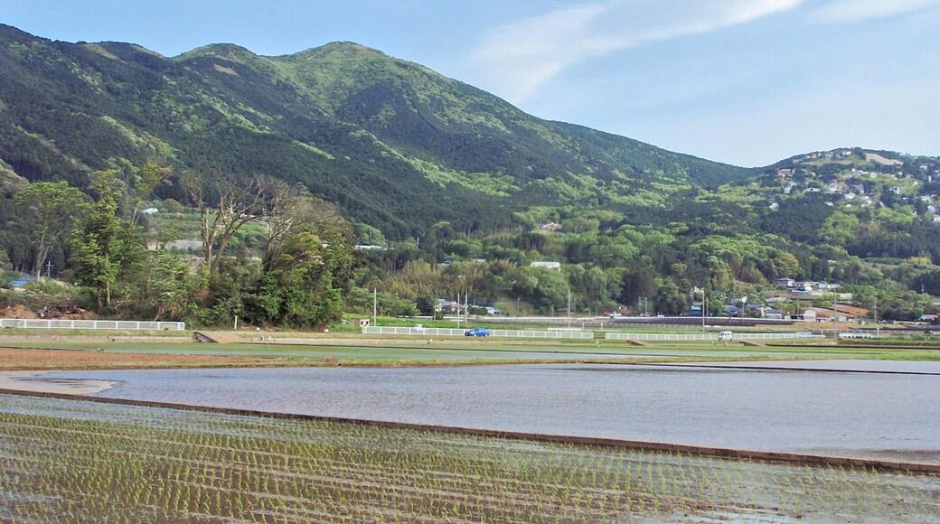 Mount Kurotake as seen from the NNW in Izu Peninsula, Shizuoka Prefecture, Japan.
