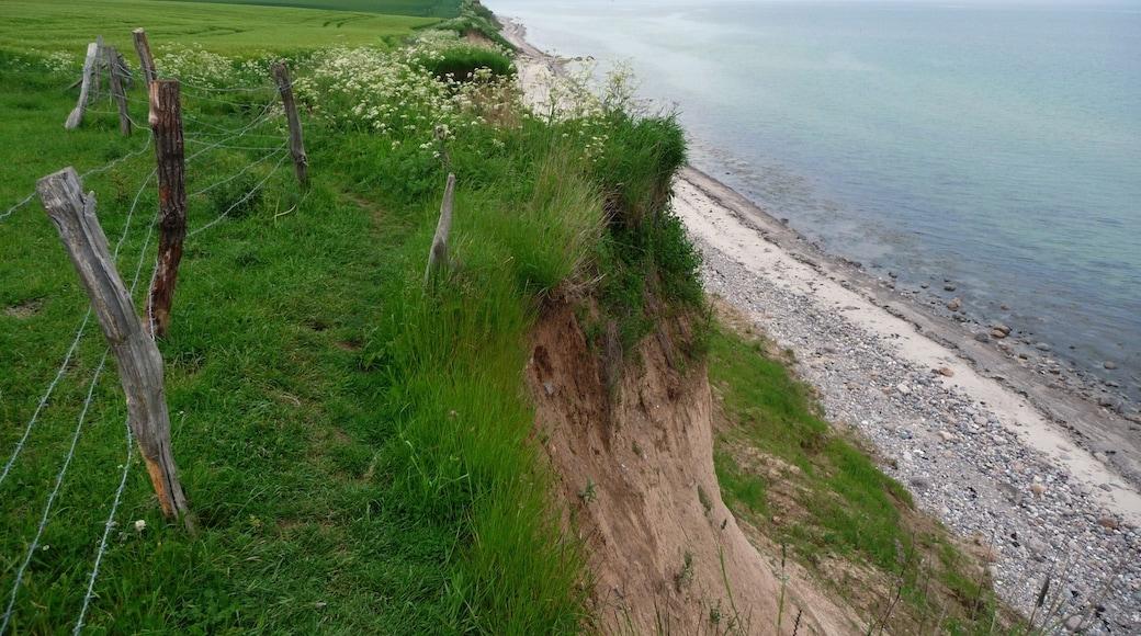"""Foto """"Strande"""" von Mark Voigt (CC BY)/zugeschnittenes Original"""