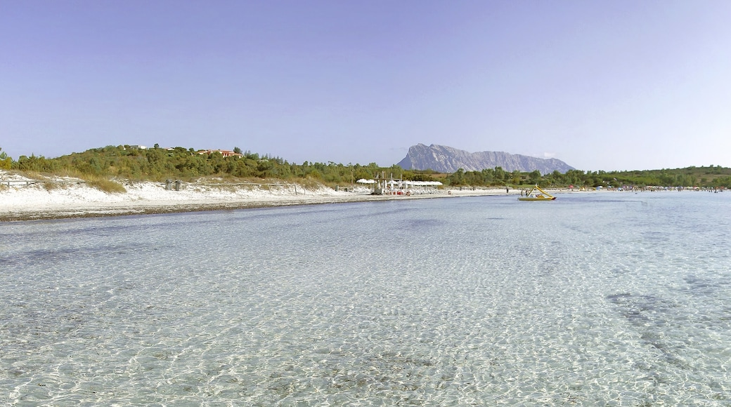"""Foto """"Playa de Cala Brandinchi"""" por Patrice Garcia (CC BY-SA) / Recortada de la original"""