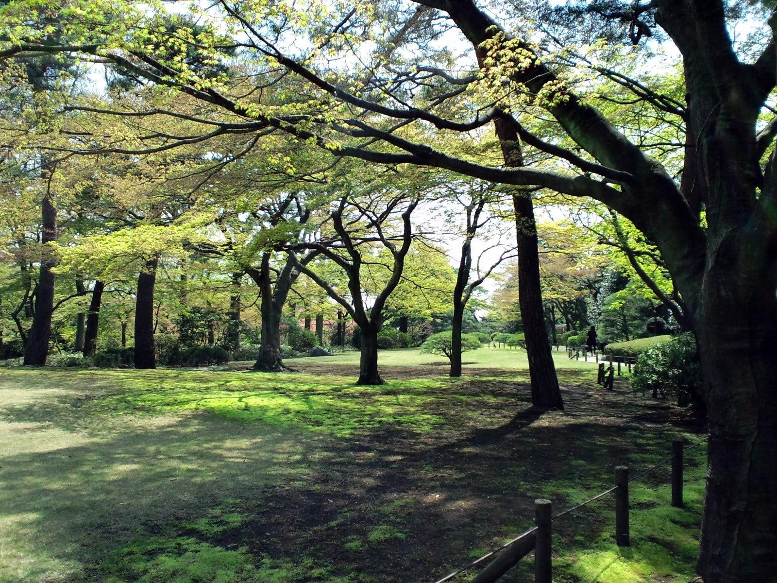 Kokubunji, Tokyo Prefecture, Japan