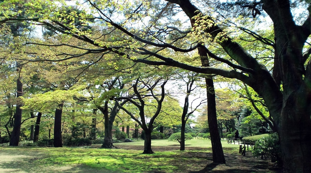 """Photo """"Kokubunji"""" by moonlightpeople (CC BY) / Cropped from original"""