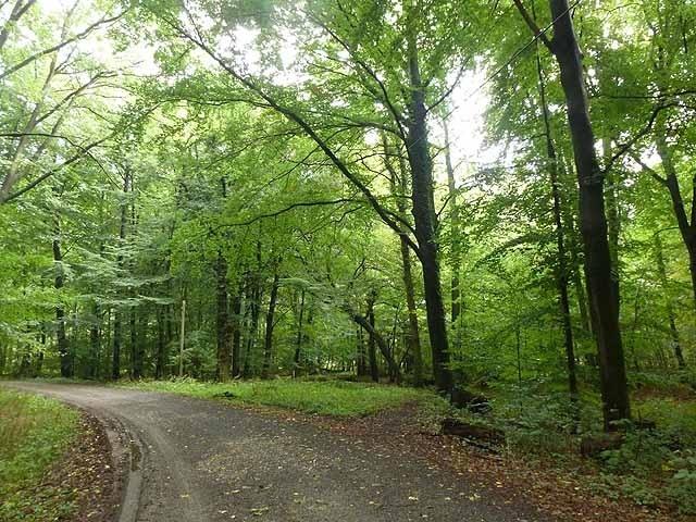 Frechen, North Rhine-Westphalia, Germany