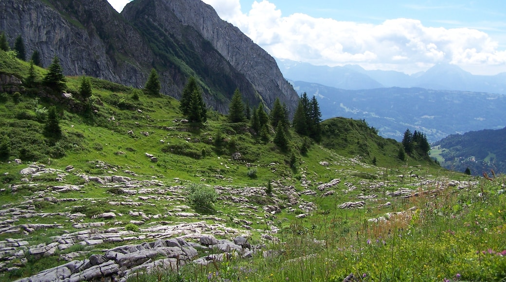 """Photo """"Samoens"""" by marsupilami51 (CC BY) / Cropped from original"""