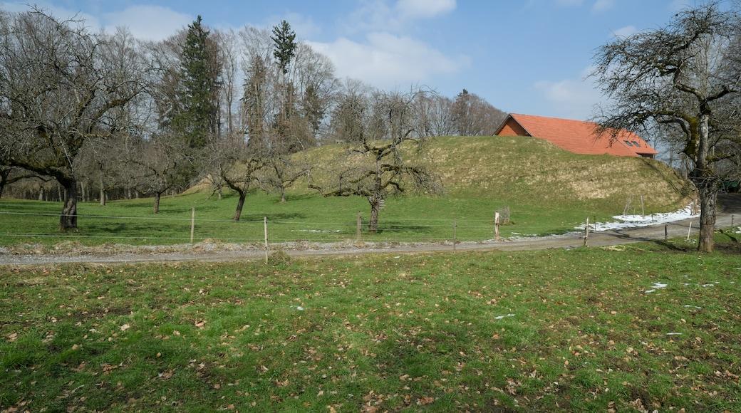 """Foto """"Ravensburg"""" von DKrieger (CC BY-SA)/zugeschnittenes Original"""