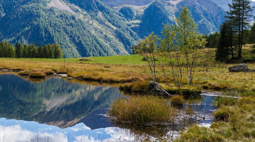 "Foto ""Val di Pejo"" von Agnes Monkelbaan (CC BY-SA)/zugeschnittenes Original"