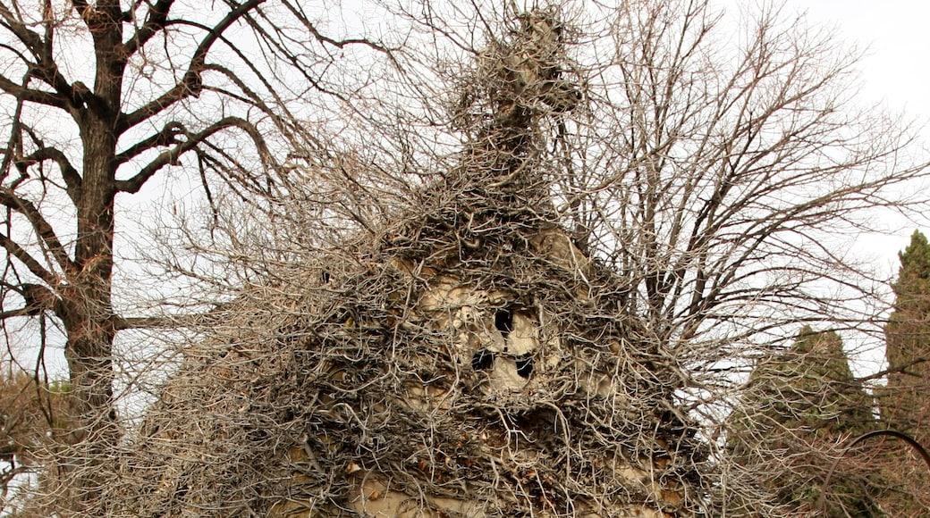 «La Timone», photo de Ianare (CC BY-SA) / rognée de l'originale