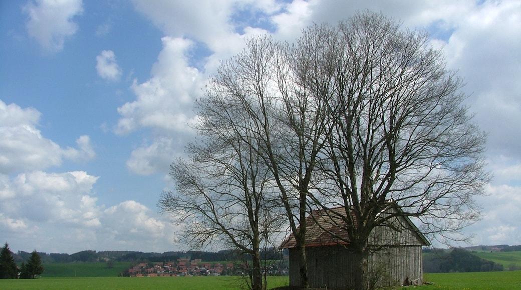 """Foto """"Obergünzburg"""" von Richard Mayer (CC BY)/zugeschnittenes Original"""