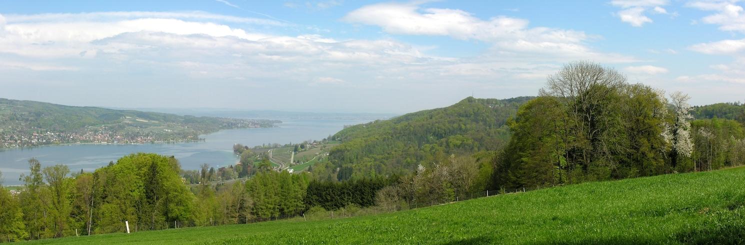 Маммерн, Швейцария