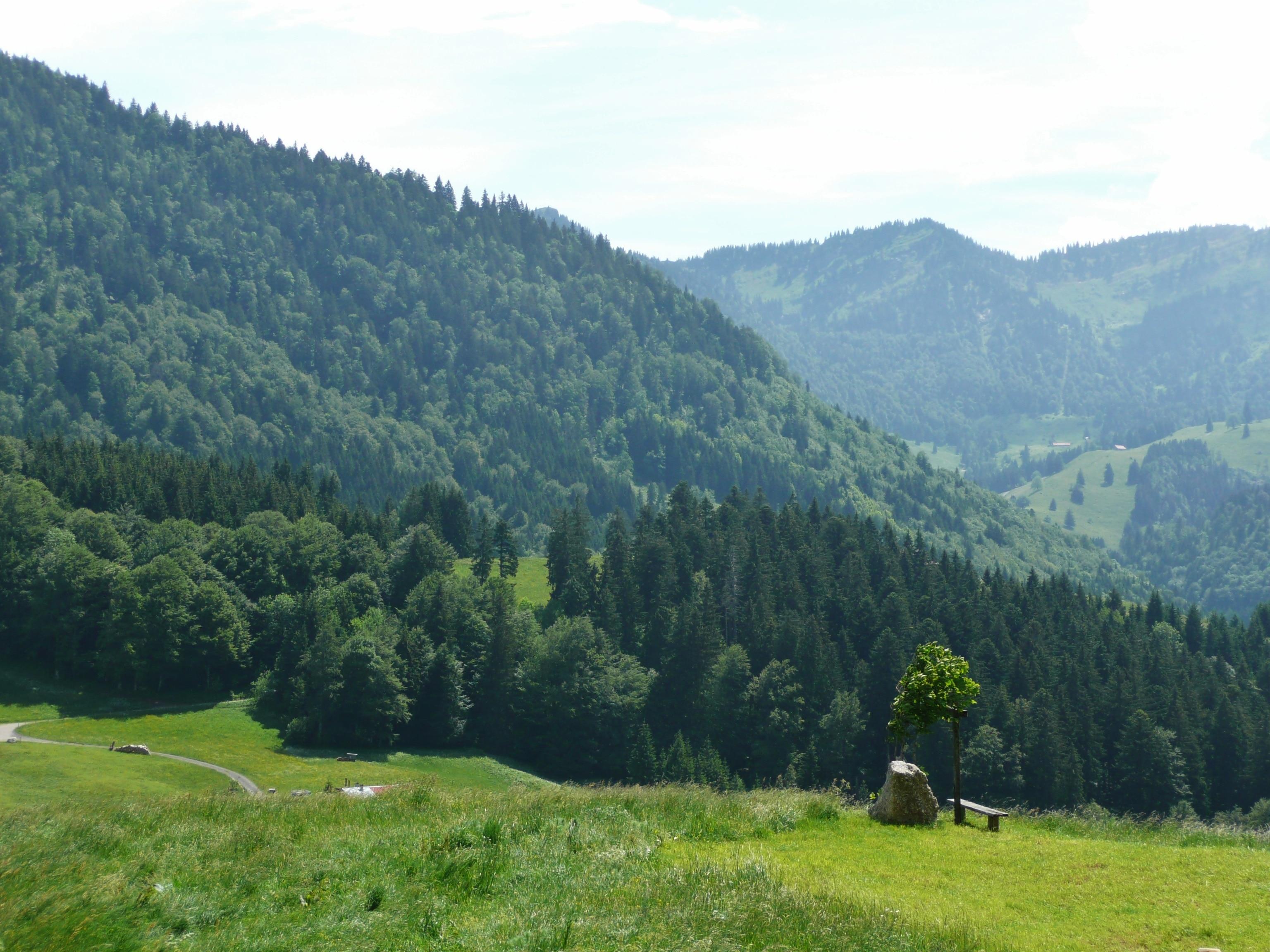 Oberstaufen, Bavaria, Germania