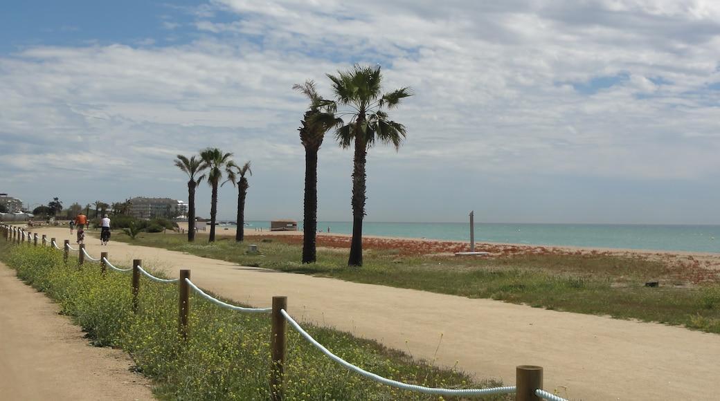 Foto 'Playa de Pineda de Mar' van Isidro Jabato (page does not exist) (CC BY-SA) / bijgesneden versie van origineel