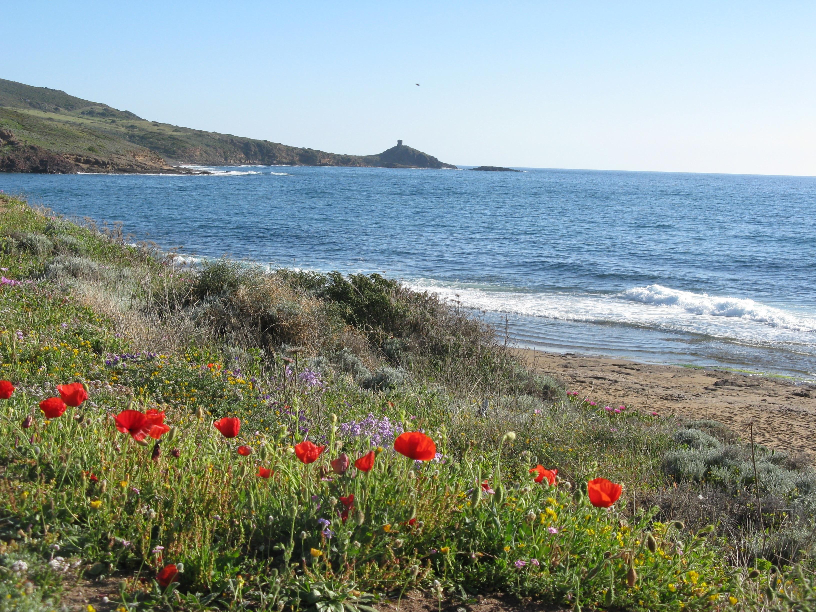 Porto Alabe Beach, Tresnuraghes, Sardinia, Italy