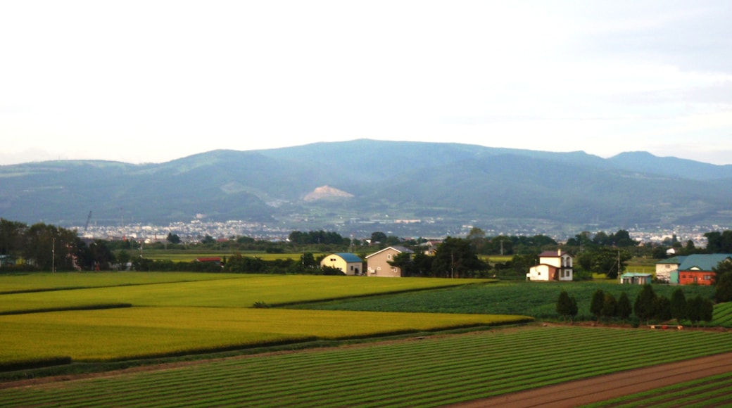 北斗中央IC付近から見た横津岳