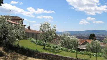 Prato/