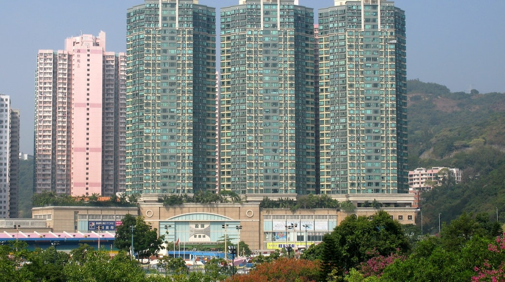 """Photo """"Lai Chi Kok"""" by Baycrest (CC BY-SA) / Cropped from original"""
