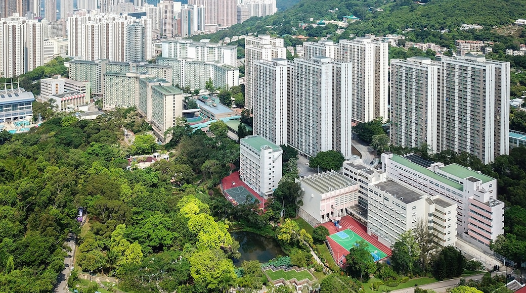"""Photo """"Kwai Chung"""" by Wpcpey (page does not exist) (CC BY-SA) / Cropped from original"""