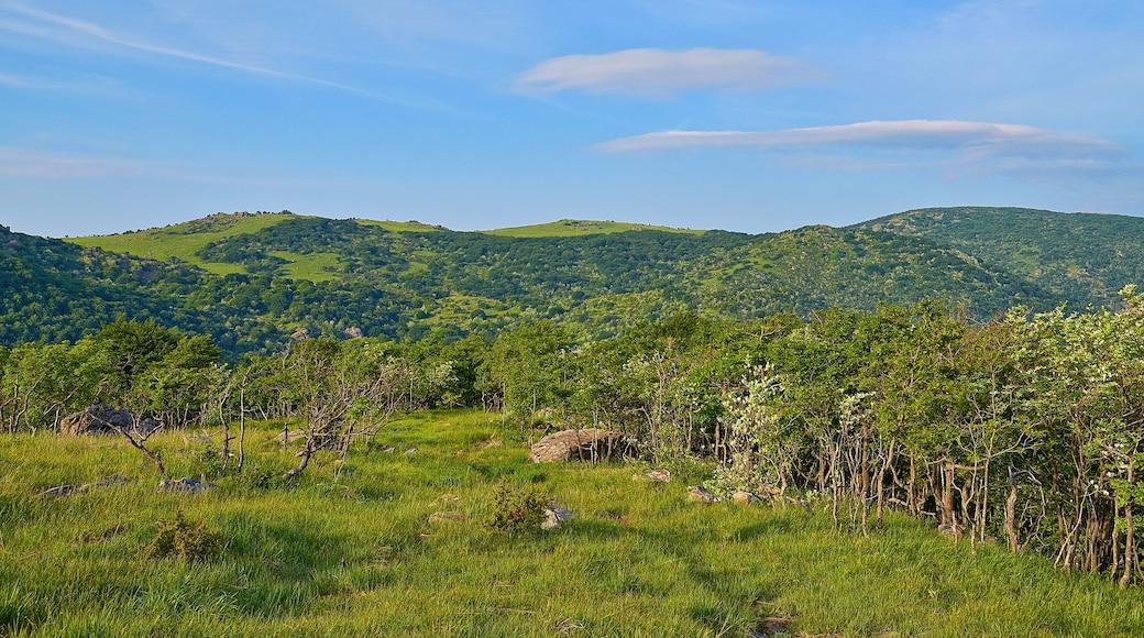 """Foto """"Parco Naturale Regionale del Beigua"""" di Terensky (CC BY) / Ritaglio dell'originale"""