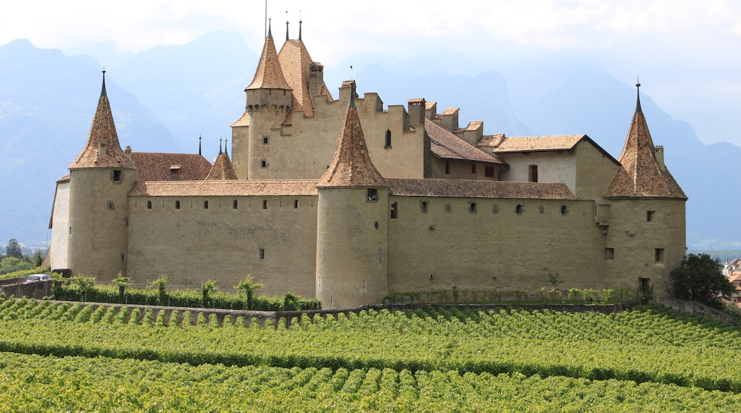 """Photo """"Aigle Castle"""" by Flobert (page does not exist) (CC BY-SA) / Cropped from original"""