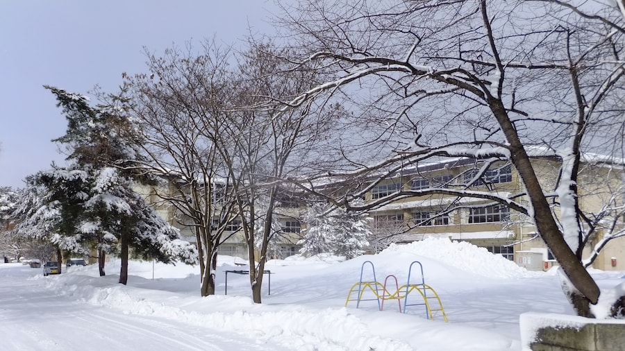 """Photo """"大館市立桂城小学校"""" by 掬茶 (Creative Commons Attribution-Share Alike 4.0) / Cropped from original"""