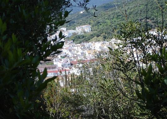 烏夫里克, 西班牙