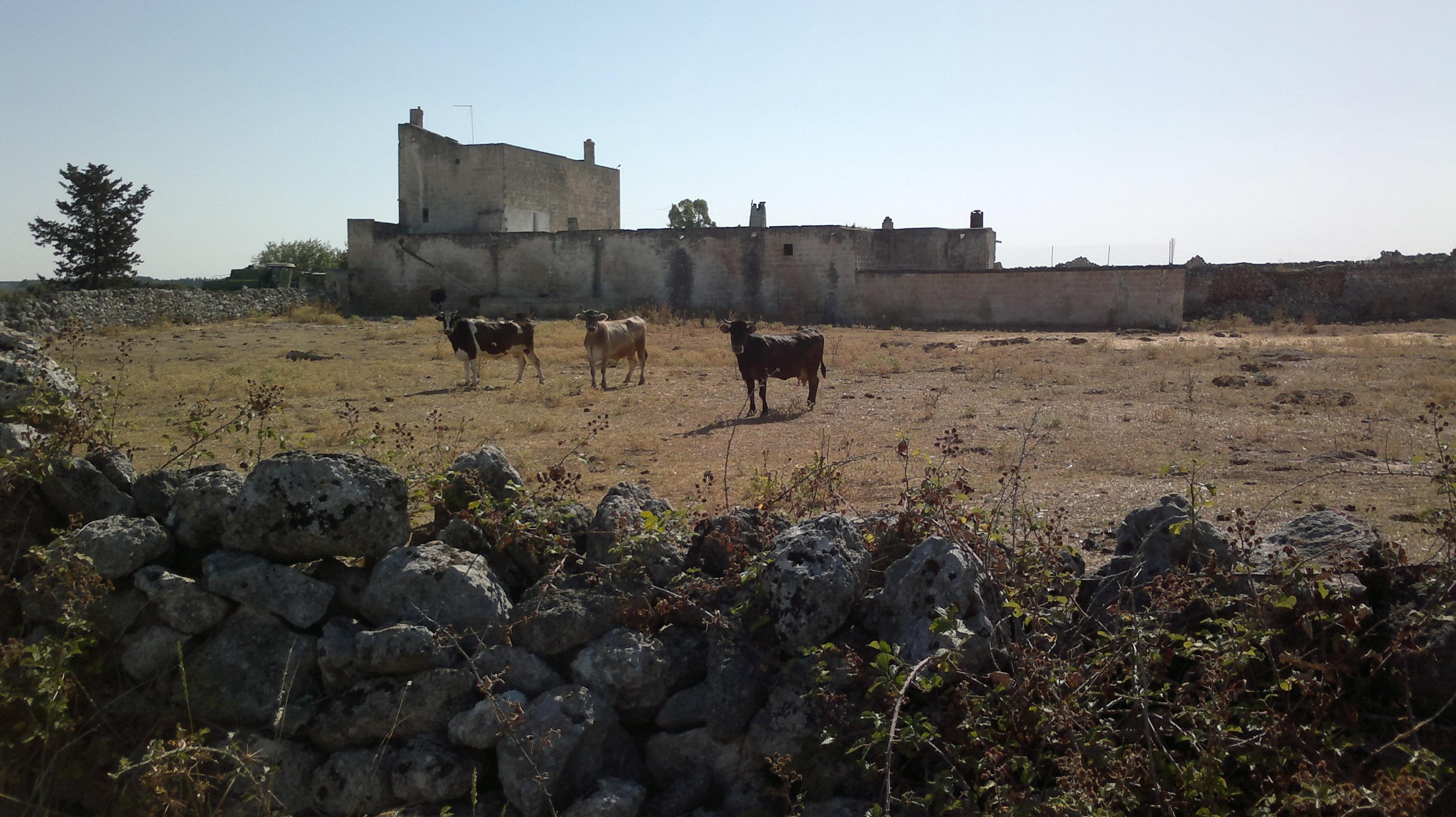 Oria, Puglia, Italy