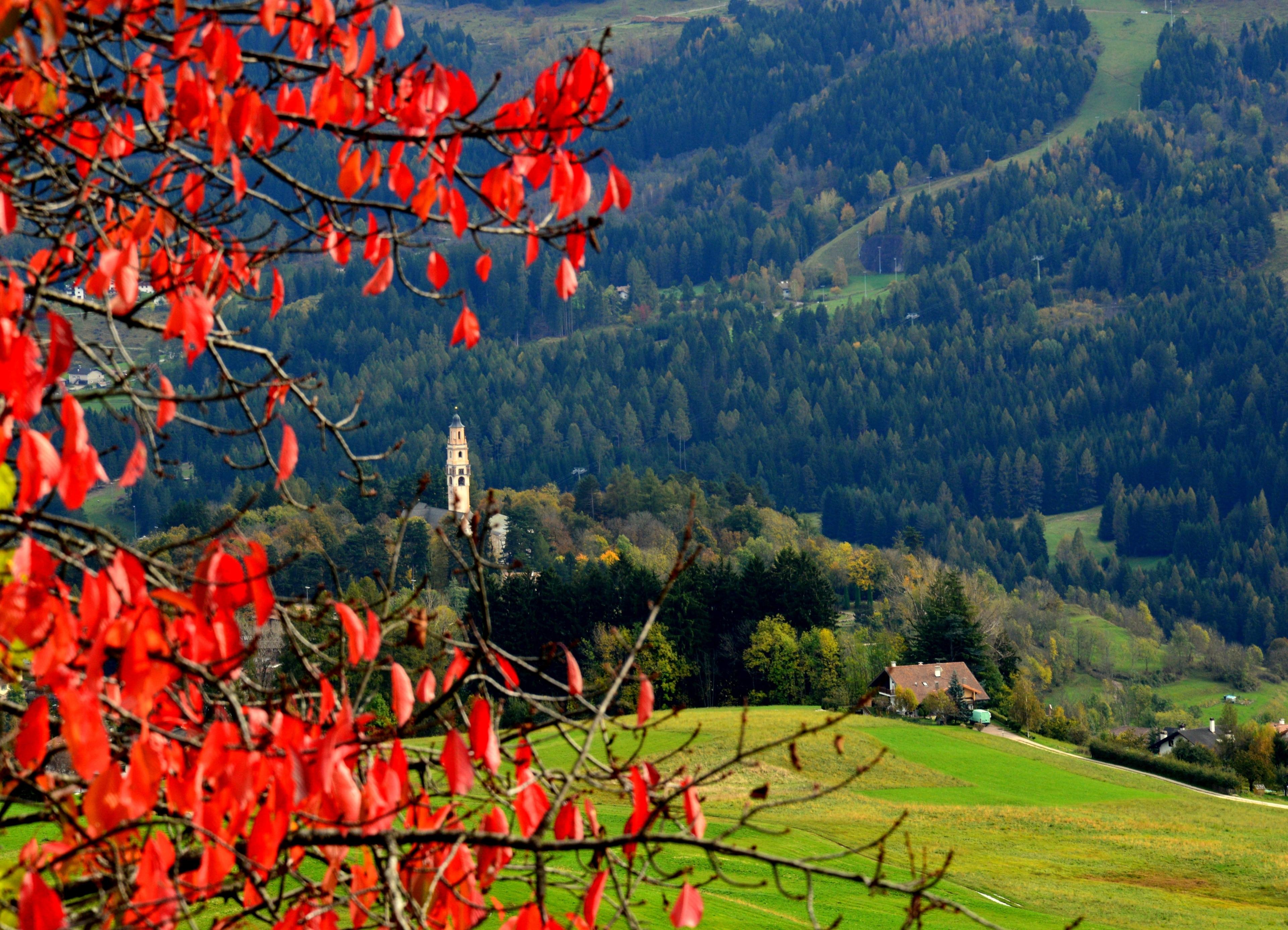 Daiano, Ville di Fiemme, Trentino-Zuid-Tirol, Italië