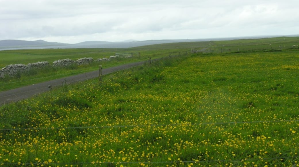 """Photo """"Shapinsay"""" by George Brown (CC BY-SA) / Cropped from original"""