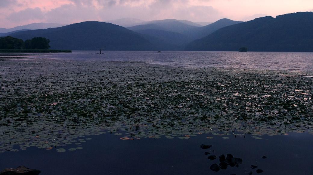 "Photo ""Onuma Quasi-National Park"" by 663highland (CC BY) / Cropped from original"