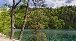 アラート湖