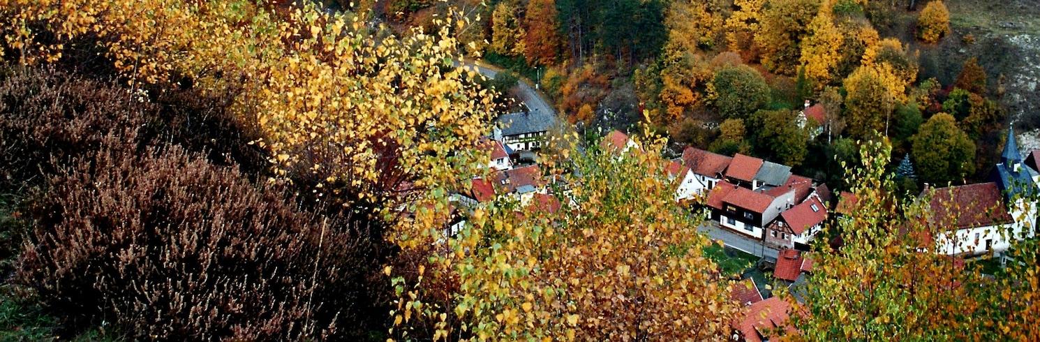 Zīdharca, Vācija