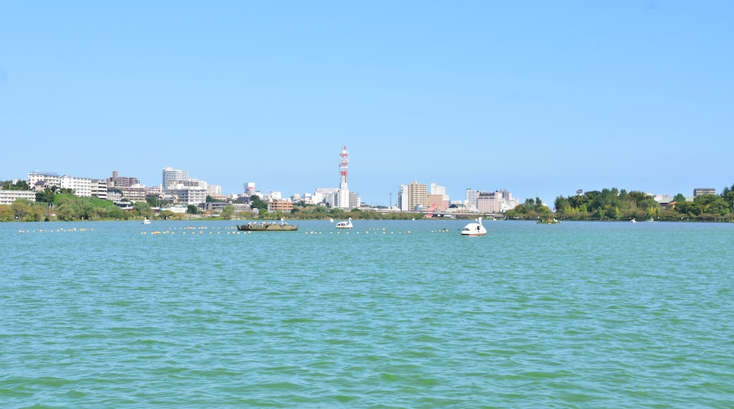 "Photo ""Kairakuen Park"" by KΛNΛTΛ (CC BY-SA) / Cropped from original"