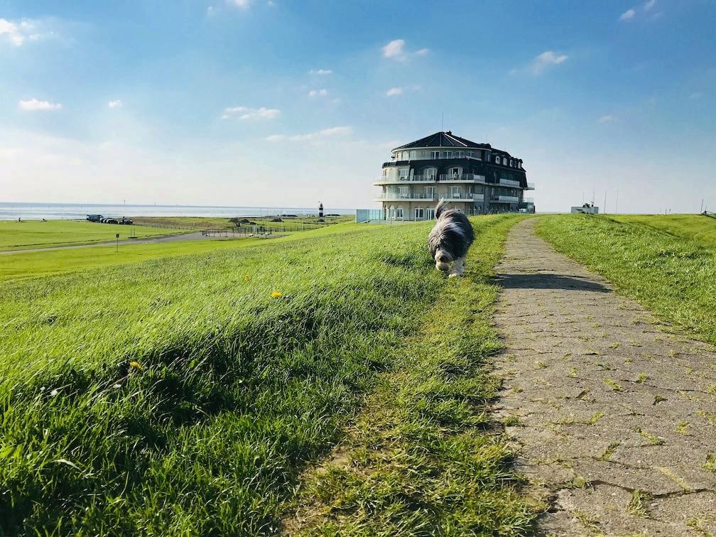 Wremen, Wurster Nordseeküste, Niedersachsen, Deutschland