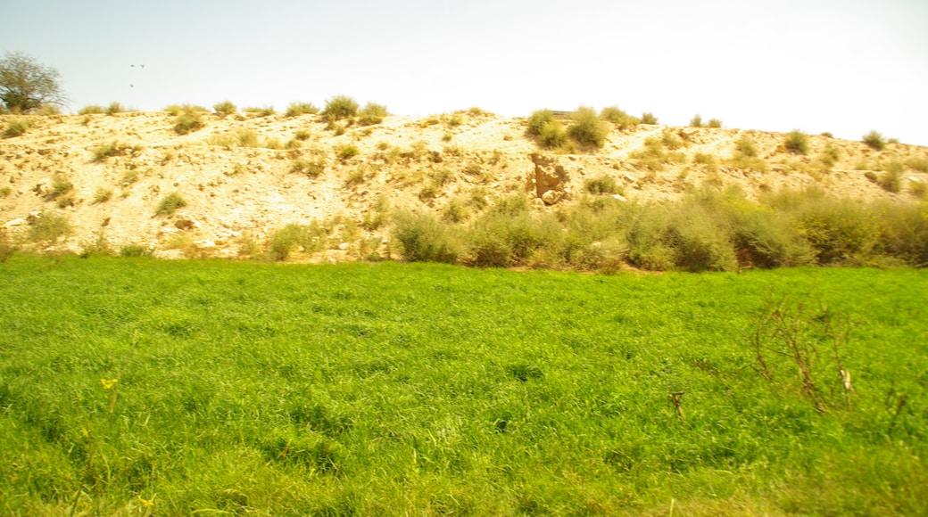 Foto 'San Juan de Alicante' van Concepcion AMAT ORTA… (CC BY) / bijgesneden versie van origineel