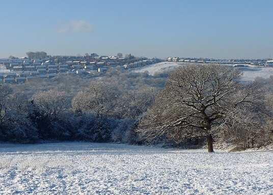 Blackwood, Velká Británie