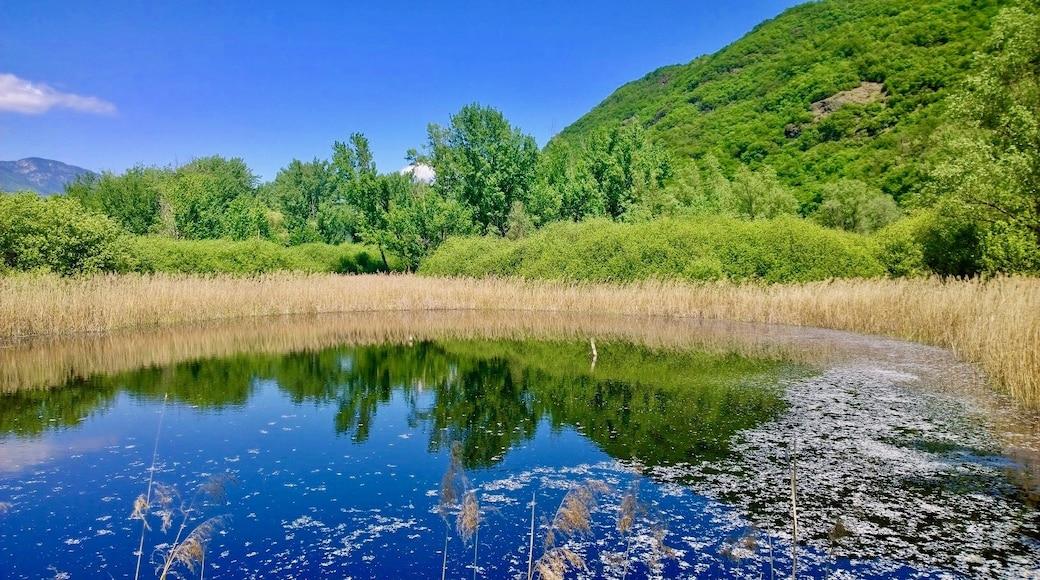 "Foto ""Kalterer See"" von AriadneNaxos (page does not exist) (CC BY-SA)/zugeschnittenes Original"