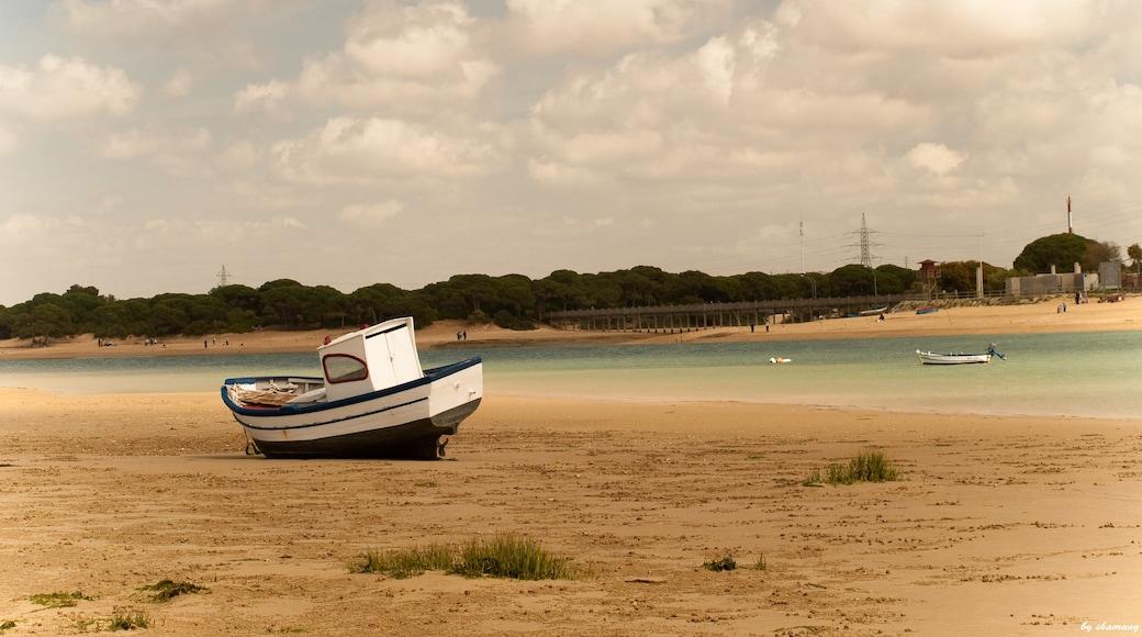 "Foto ""Puerto Real"" de shaorang (CC BY-SA) / Recortada do original"