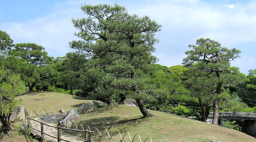 """Photo """"Hikone"""" by Kok Leng Yeo (CC BY) / Cropped from original"""