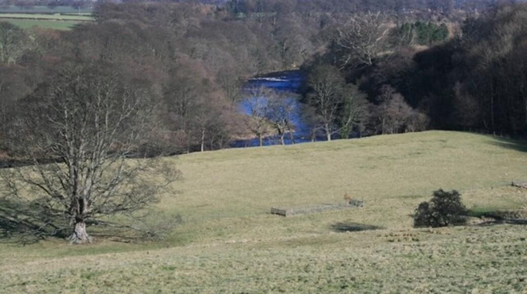 "Photo ""Greta Bridge"" by Mick Garratt (CC BY-SA) / Cropped from original"
