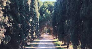 Aiguerelles
