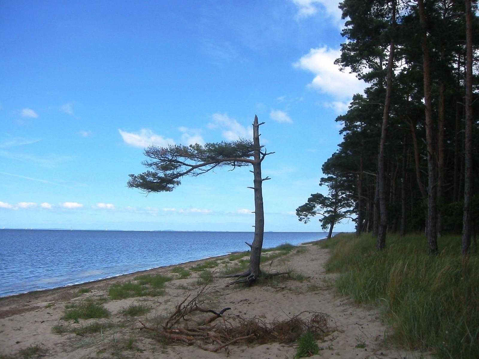 Loissin, Mecklenburg-West Pomerania, Germany