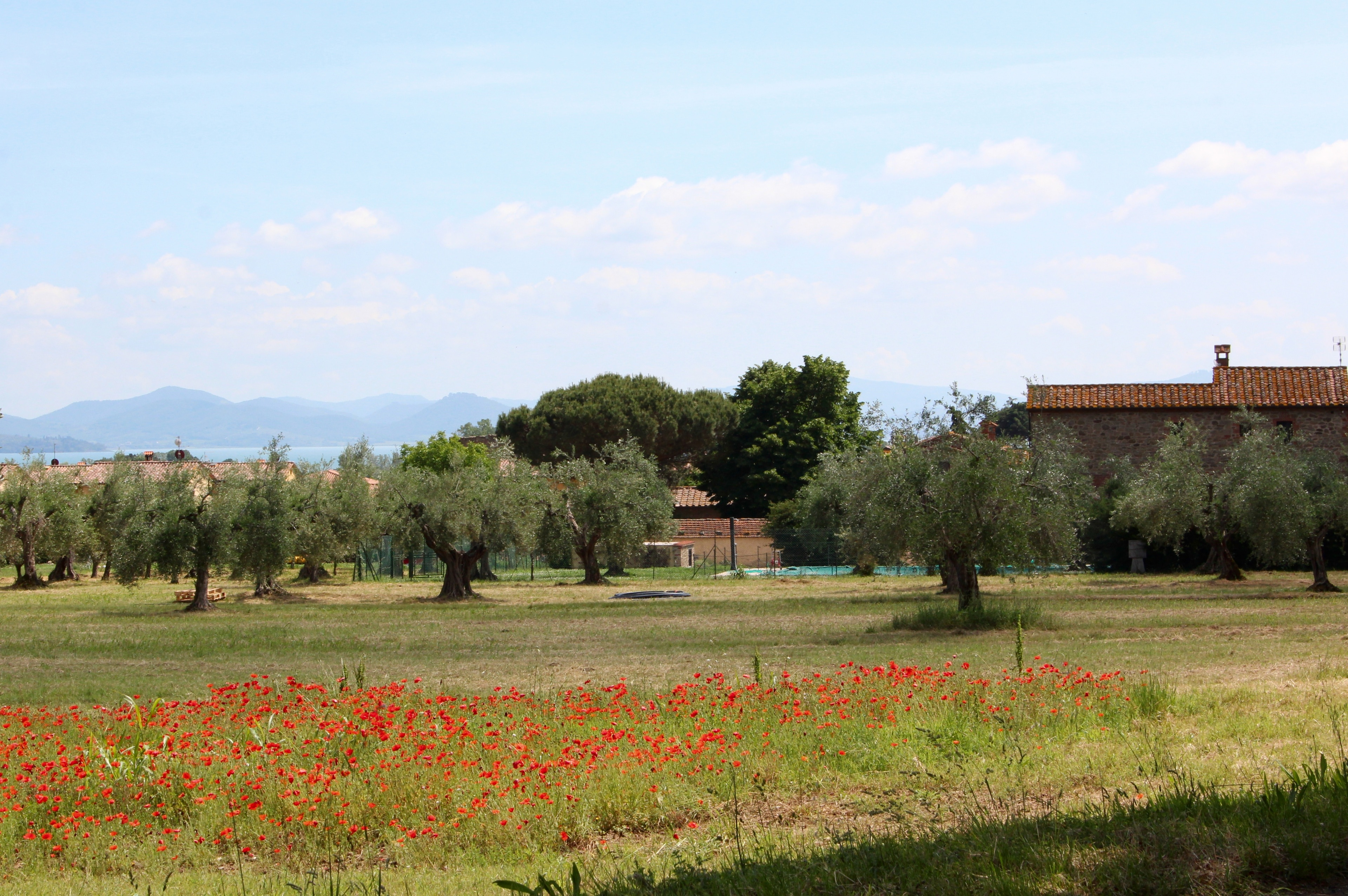 Vernazzano Basso, Tuoro sul Trasimeno, Umbria, Italy