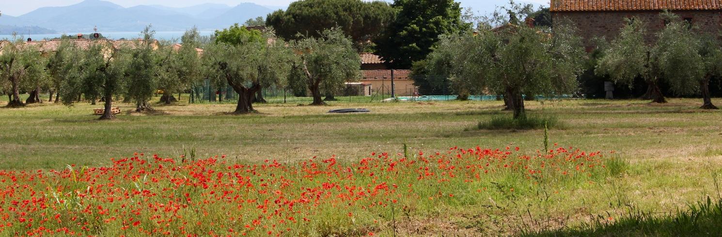 Vernazzano Basso, อิตาลี