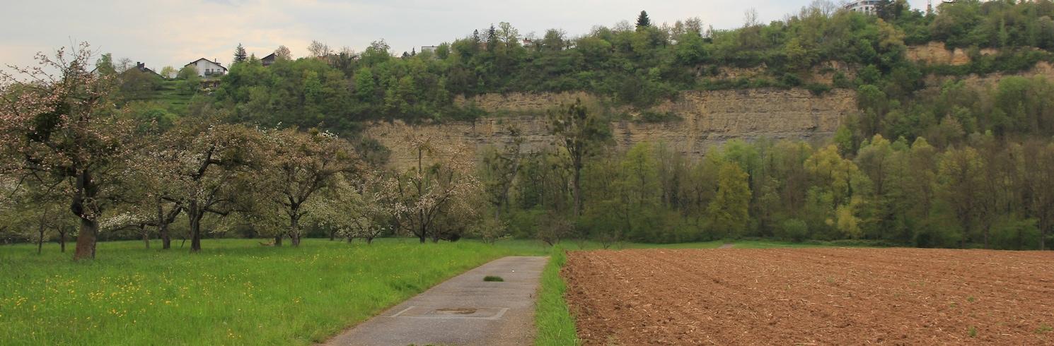 Remseck am Neckar, Germany