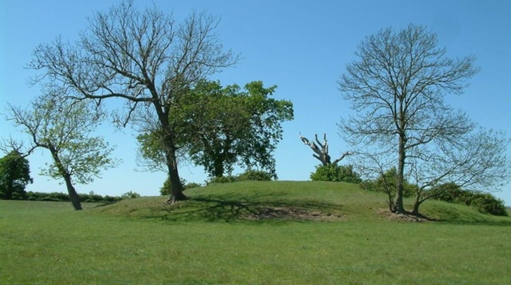 Foto 'Brentwood' van Robin Lucas (CC BY-SA) / bijgesneden versie van origineel