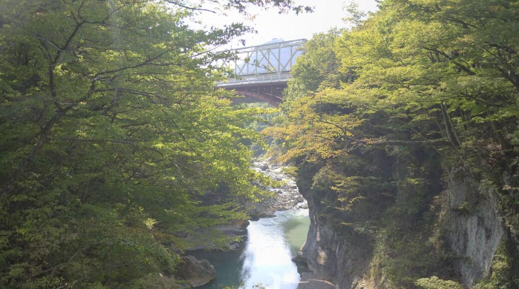 """Foto """"Naganohara"""" de くろふね (CC BY) / Recortada do original"""