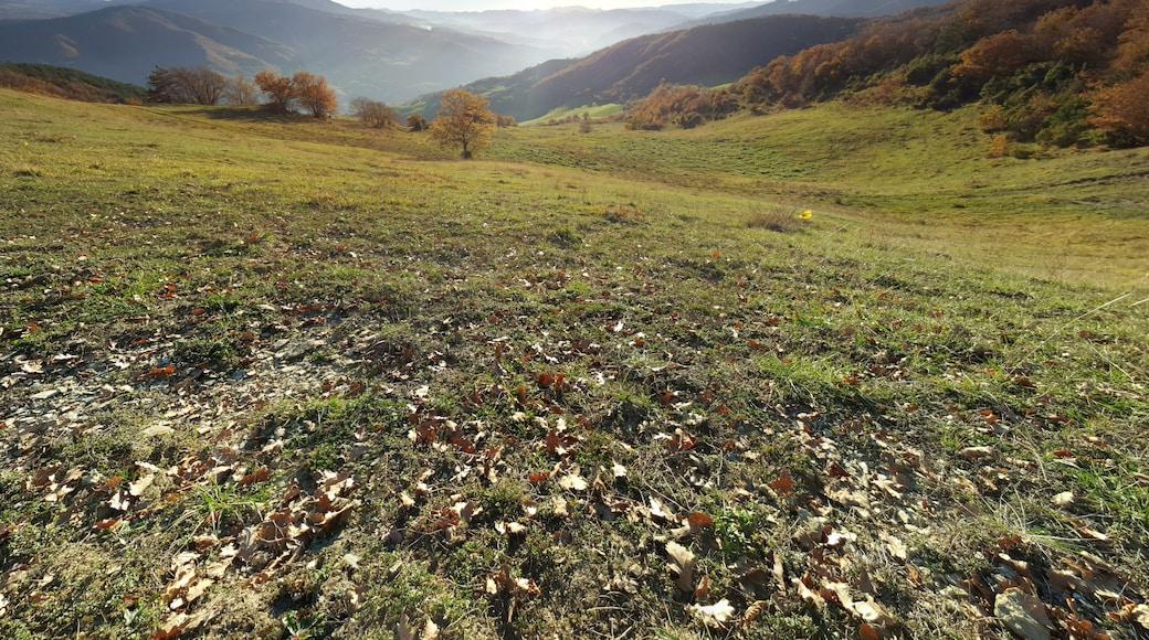 """Foto """"Bagno di Romagna"""" di ЭЯMДИИФ БIFFI (CC BY-SA) / Ritaglio dell'originale"""