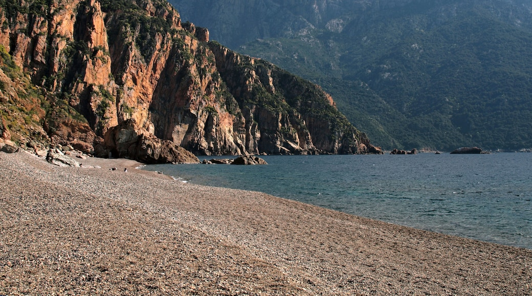 """Photo """"Bussaglia Beach"""" by Pierre Bona (CC BY-SA) / Cropped from original"""